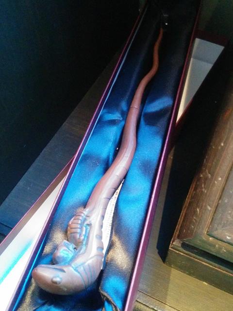 オークの杖写真(カシノキの杖)