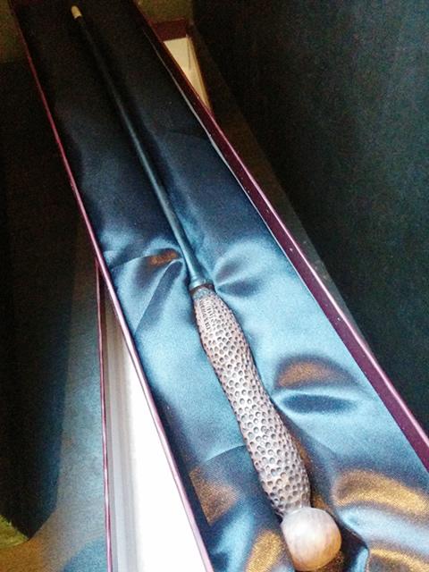ツタの杖写真 Ily's wand