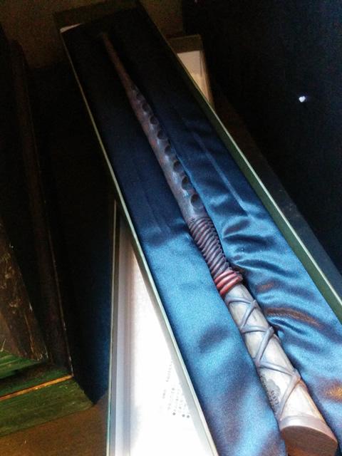 ヒイラギの杖 写真↑ holly's wand